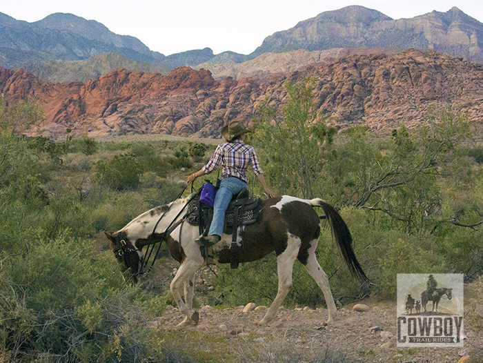 Cowboy Trail Rides - Wrangler Deryn turned around on horseback taling to a rider behind her